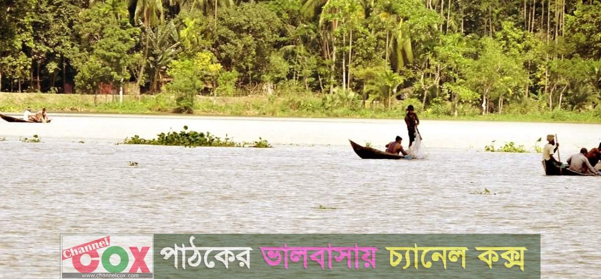 থামছেনা মা ইলিশ নিধন: ঝালকাঠি নাগরিক ফোরামের নতুন প্রস্তাব