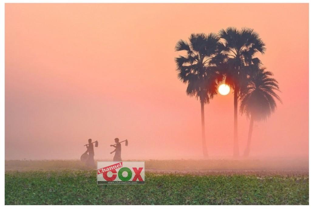 কাল বসন্ত:বিদায় নিচ্ছে শীত